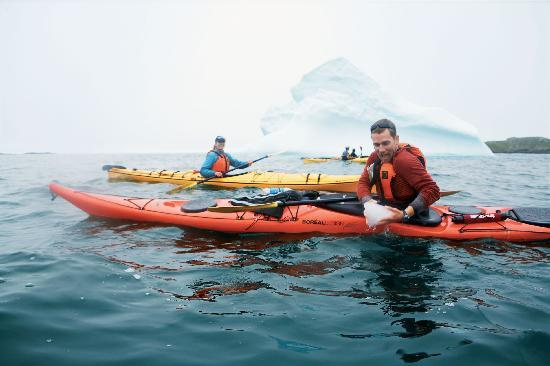 kayaking-iceberg-viewing
